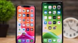 HOT: Xuất hiện kết xuất iPhone 2020 cỡ lớn, không chứa notch
