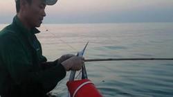 """""""Cần thủ"""" rủ nhau lao xuống biển Thừa Thiên Huế săn cá bơi sát bờ"""