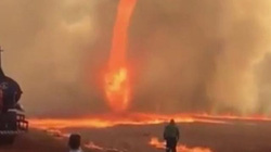 Khiếp sợ vòi rồng lửa nóng nghìn độ C, cao hàng chục mét