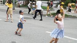 Những tuyến phố đi bộ Hà Nội dự kiến sẽ cấm phương tiện 1 tháng