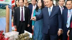 Hình ảnh Thủ tướng dự hội nghị xúc tiến đầu tư lớn nhất ở Lạng Sơn