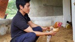 Tỷ phú ở Mường Mùn phát tài nhờ nuôi gà đặc sản, ngan đen sì