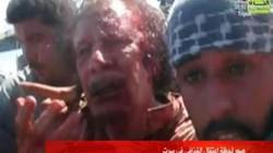 Rộ tin Sarkozy lên kịch bản giết Gaddafi