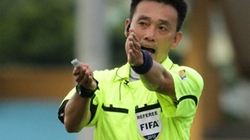 Mùa giải bóng đá 2013: Việt Nam có thể có trọng tài ngoại