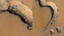 """Phát hiện """"nhện"""" tắm nắng trên sao Hỏa?"""