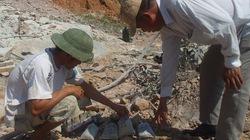 Ngừng thăm dò kho vàng 4.000 tấn ở núi Tàu