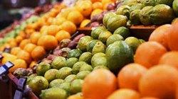 Tăng cường kiểm soát hàng nông sản nhập khẩu