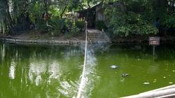 Xác người đàn ông nổi giữa hồ cạnh Văn Miếu