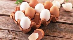"""4 bệnh nói """"không"""" với trứng gà"""