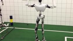Clip: Robot cũng biết... nhảy Gangnam Style