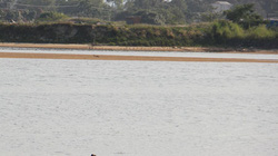 Quảng Ngãi: Rơi khỏi đò, 3 người chết đuối