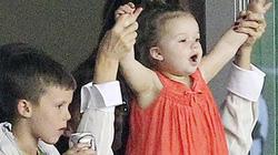 Con gái Becks cuồng nhiệt cổ vũ cho bố