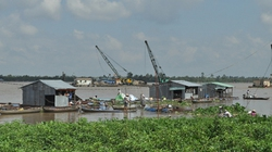 Vĩnh Long: Sạt lở cuốn trôi 25 bè cá, thiệt hại hơn 4 tỷ đồng
