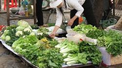 Hà Nội: Rau xanh vẫn tăng giá sau bão số 8