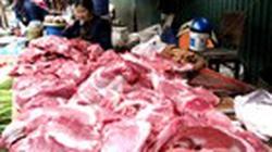 385 mẫu thịt tươi nhiễm khuẩn salmonella