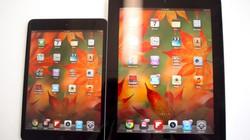 3.600 chiếc iPad Mini bị mất cắp tại sân bay