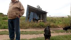 Tổng thống Uruguay từ chối xa hoa, sống bần hàn