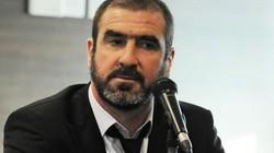 Cantona muốn kế nghiệp Ferguson dẫn dắt M.U