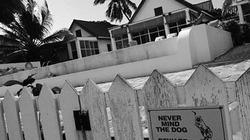 Triệu phú giết hàng xóm vì chó bị đầu độc?