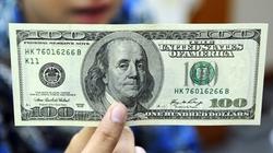 Phát hiện du khách dùng đô la giả