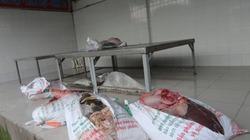 Phát hiện xe khách chở thịt thối đi bán