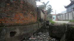 Thái Bình:  Làng tỷ phú... kêu cứu