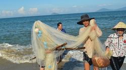 Quảng Nam: Ngư dân được mùa ruốc