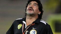 Maradona sắp thoát cảnh thất nghiệp