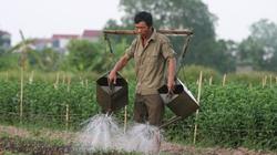 Chương trình truyền hình mới dành cho nông dân