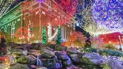 Thế giới lung linh sắc màu đón Giáng sinh