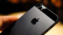 iPhone 5 xách tay tiếp tục giảm giá