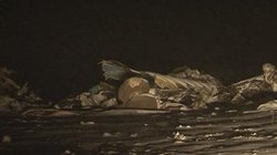Máy bay quân đội Kazakhstan bị rơi, 27 người chết