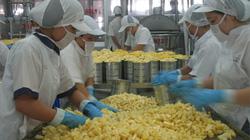 Việt Nam tiếp tục đứng đầu về xuất khẩu điều