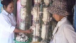 Sẻ chia bí quyết trồng nấm cho bà con thôn xã