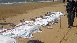 Vụ đắm tàu: Tang thương phận người nhập cư