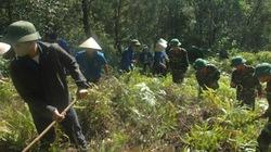 Lữ đoàn công binh Hải Vân:  Khi quân - dân bắt tay  làm nông thôn mới