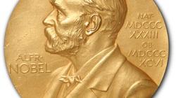 """Giải Nobel: Vinh quang, cay đắng và những điều... """"khuất tất"""""""