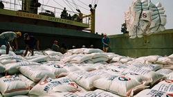 Thế giới ghi nhận  đóng góp của Việt Nam