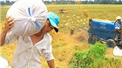 Cho vay nông nghiệp có bảo hiểm lãi suất