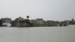 """Chùm ảnh: Lũ ở Nghệ An, khốn khổ những """"ốc đảo"""""""