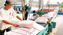 Hỗ trợ thêm lãi suất mua tạm trữ thóc, gạo