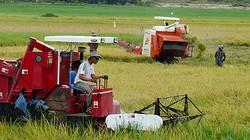 Cơ giới hóa thu hoạch ở Long An: Đạt trên 98%