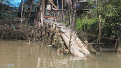 Công ty Hào Dương xả thải bẩn: Đình chỉ ngay các hoạt động sai phạm