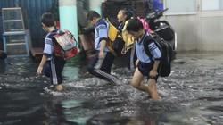 Tránh bão, nghiêm cấm học sinh di chuyển bằng đường sông