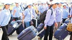 15,8 triệu yên hỗ trợ đào tạo thanh niên nghèo