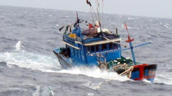 4 tàu cá cùng 37 lao động đang gặp nguy trên biển