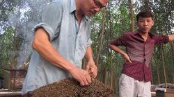 Người thuần hoá ong rừng