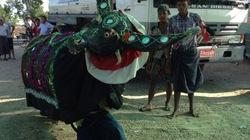 """Phân bón """" Đầu Trâu"""" ra mắt ấn tượng tại Myanmar"""