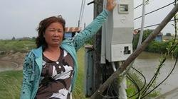 Sóc Trăng : Ngành điện làm sai,  hộ nuôi tôm thiệt hại