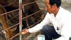 Bạn của nông dân Khánh Công